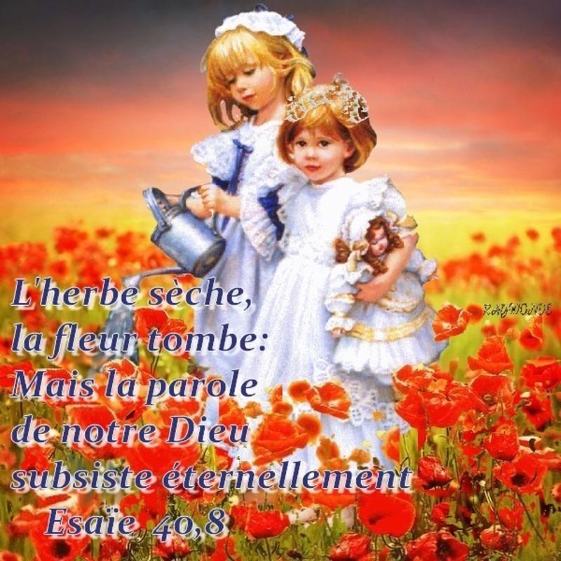 Bonne semaine à tous  que Dieu bénisse notre foi La-parole-de-Dieu